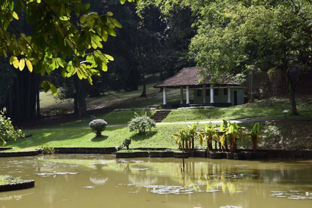 Royal Botanic Gardens, Kandy