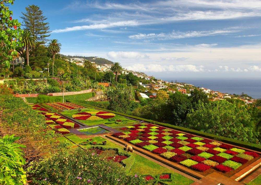 Botanical garden in Portugal, Madeira, Funchal,